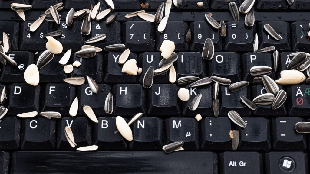 Keyboard with seeds on it